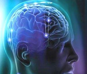 локализация опухоли головного мозга